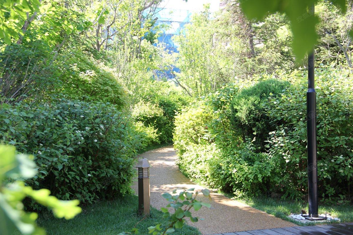 万科西山别墅园林实景图