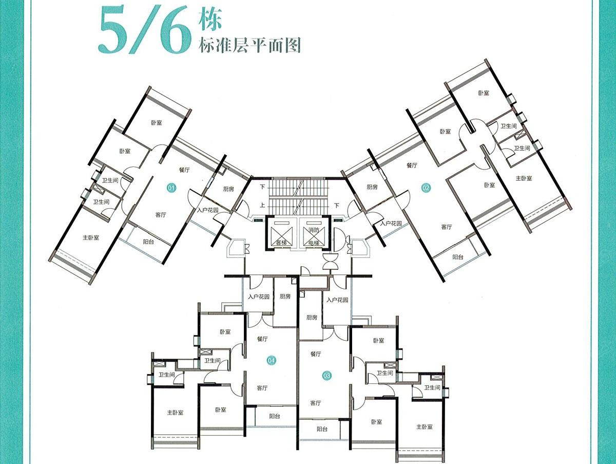 5/6栋标准楼层平面图