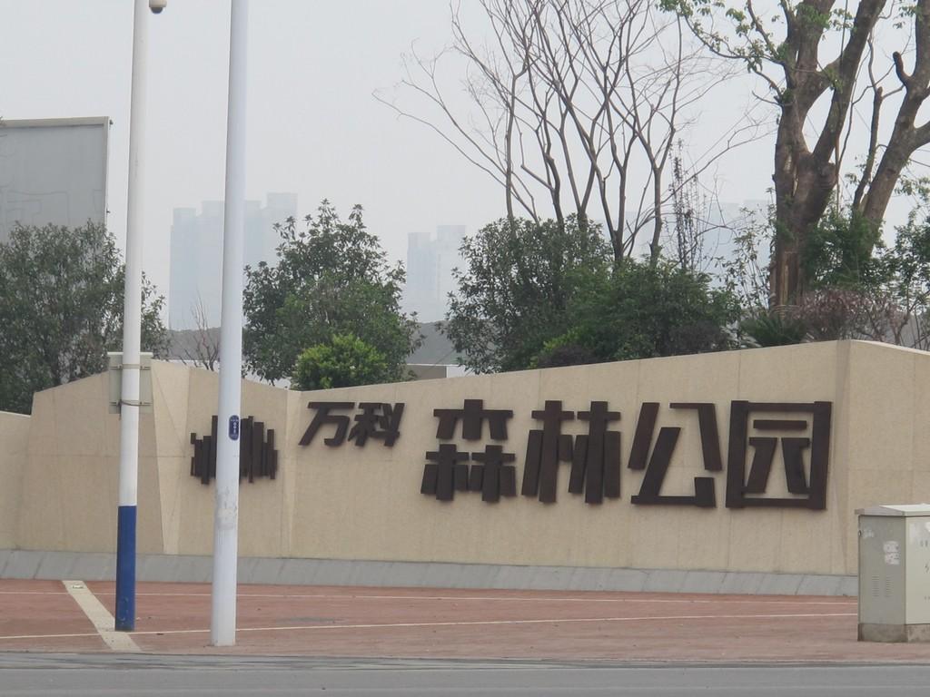 万科森林公园实景图20140525-合肥搜狐焦点网