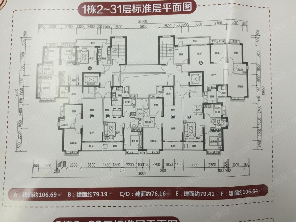 1栋2-31层楼层平面图