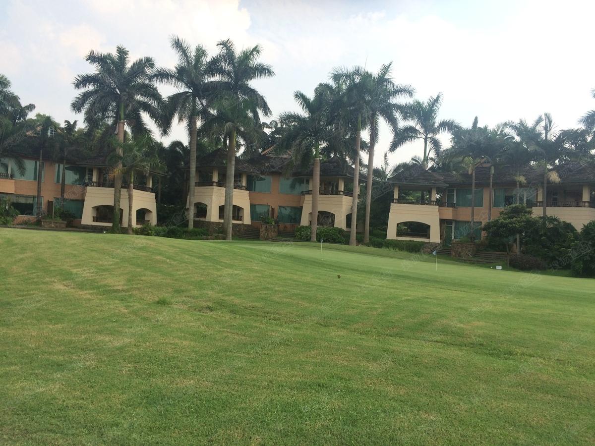 惠阳恒大棕榈岛实景图-小区园林